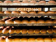 Ondernemers Vechtdal en Mastenbroek in race voor Groene Twinkeling