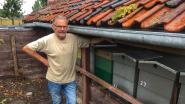 """Imker Antoon (71) vindt 300.000 bijen dood terug: """"Ik denk dat ik weet wie ze heeft vergiftigd"""""""