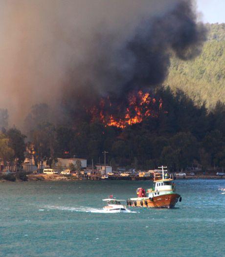 Meerdere doden, bijna 200 gewonden door bosbranden in Turkije