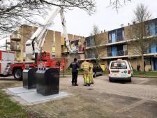 Brandweer Lelystad redt kat uit boom
