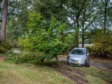 Vrouw ramt bij Eerde twee bomen met haar Corsa en scalpeert daarbij een beukje