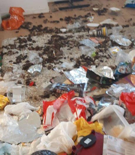 Hond in beslag genomen vanuit 'ernstig vervuilde' woning in Enschede