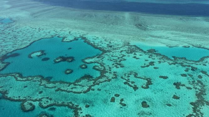 Great Barrier Reef dan toch niet op lijst met bedreigd erfgoed