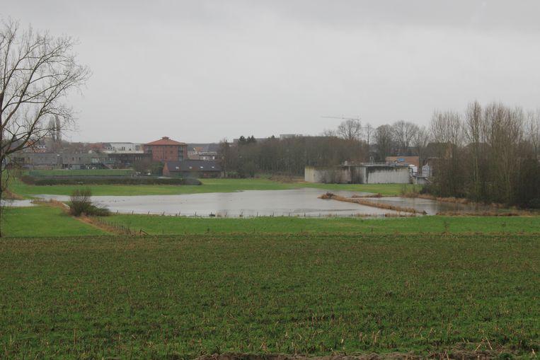 Op verschillende plaatsen in Ronse staat het water hoog. Beeld Lieke D'hondt