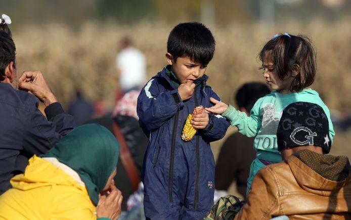 Kinderen eten maïs in een veld, op weg naar een vluchtelingenkamp in Slovenië.