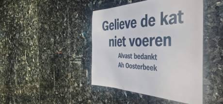Geen lekkers meer bij Albert Heijn in Oosterbeek voor Stibbe, de supermarktkat