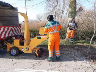 Gesnoeide takken van gemeentebomen krijgen nieuw leven op Finse piste
