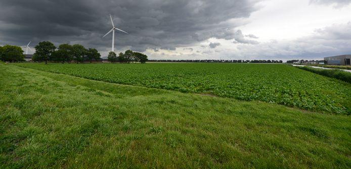 Ongeveer de helft van de grond die bestemd is voor het datacenter is afgelopen weken via de gemeente Zeewolde in bezit gekomen van Polder Networks, het bedrijf dat de aankoop van de grond regelt voor het Amerikaanse bedrijf.