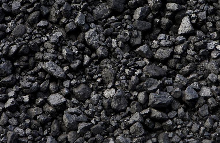 Steenkool Beeld anp