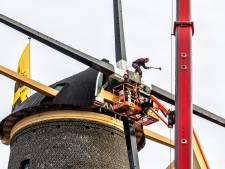 Dit is waarom Schiedamse molens - de grootste ter wereld - nieuwe wiekenroeden nodig hebben