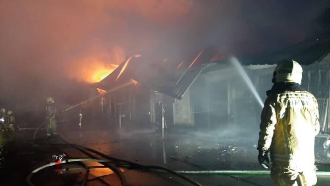 Uitslaande brand vernielt stal, paard en koeien gered