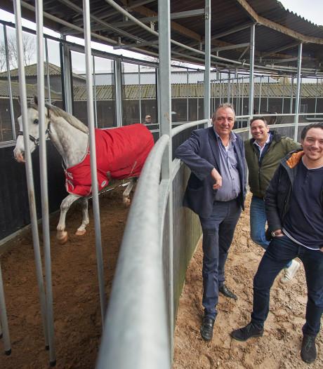 De paardenmolens van Molenkoning Reek gaan de hele wereld over dankzij 'Ikea-formule'