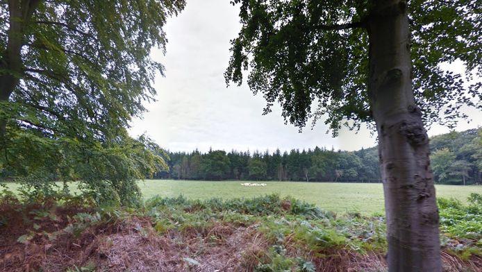 Het terrein op de kruising van de Vuurse Steeg en de Embranchementsweg, waar het theehuis moet komen.