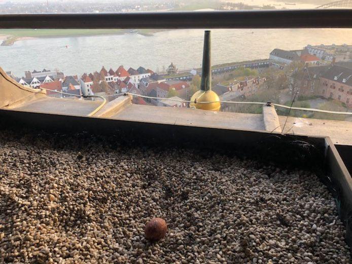 Het ei in de bak boven op de Stevenstoren.