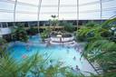 Het subtropische zwembad Aquafun bij SunParks in Oostduinkerke, waar Faith redster is.