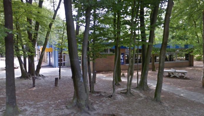 De Koning Davidschool, gelegen in het bos bij de Ceelman van Ommerenweg.