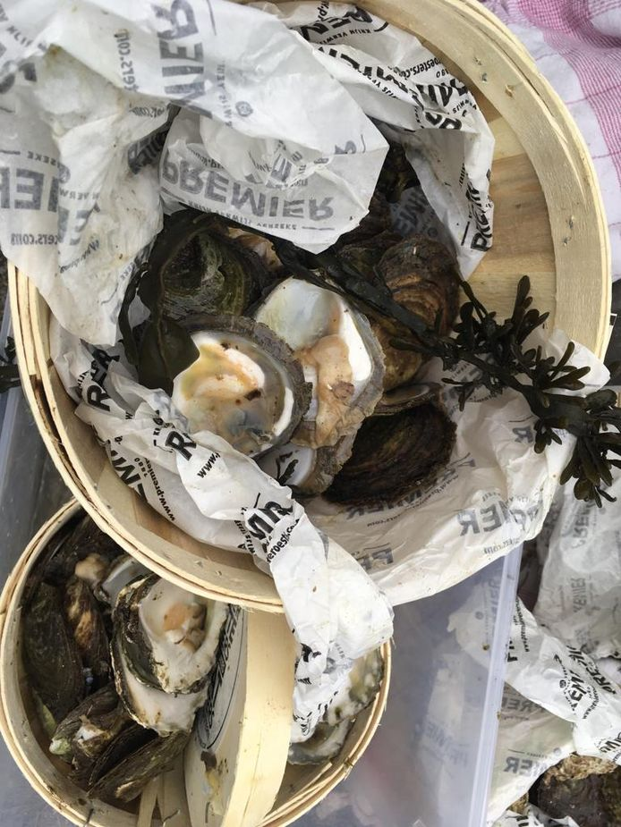 De oestermandjes tijdens het NK Oestersteken