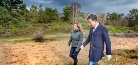Halvering aantal wilde dieren in Nederland sinds 1990, stikstof grote boosdoener