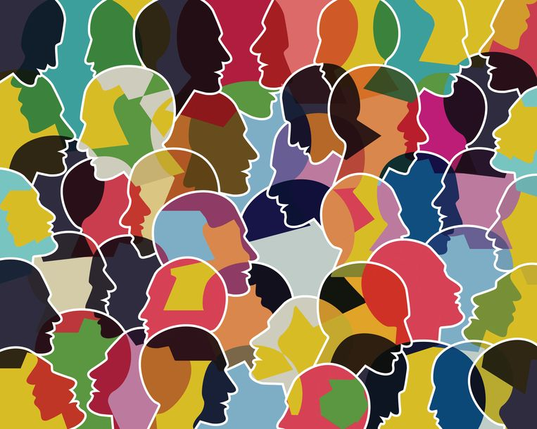 Op universiteiten is ophef ontstaan over de deelname aan de Barometer Culturele Diversiteit van het CBS.  Beeld Getty Images/iStockphoto
