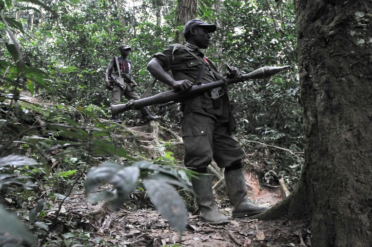 Leden van de Congolese militie Democratic Forces for the Liberation of Rwanda (FDLR). Beeld AFP