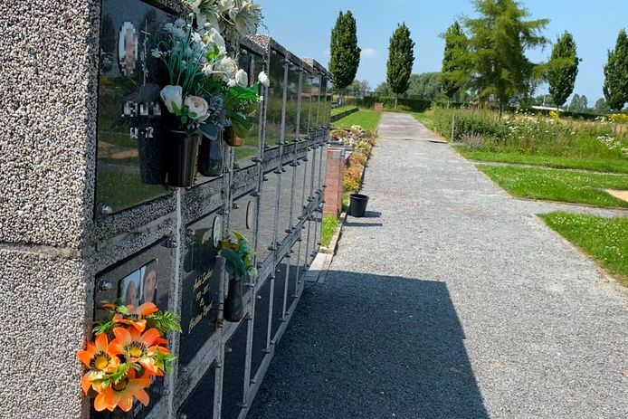 Quelqu'un a ouvert le mur des urnes du cimetière d'Aaigem pour voler les cendres du papa de Shanaia (17 ans), Yalenka (16 ans), Lavinia (15 ans) et Xenio (13 ans).