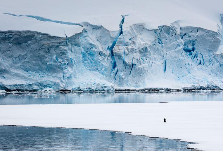 Antarctica. De ramp die er 430.000 jaar geleden plaatsvond, kan nog steeds altijd en overal op aarde gebeuren. Beeld Getty Images