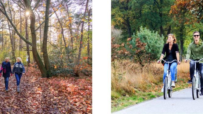 Gelderland maakt korte metten met bordjesoerwoud: overal zelfde wegwijzering