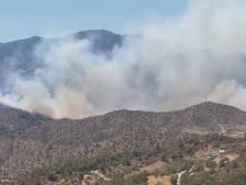 Drama op Cyprus na intense vlammenzee; 67-jarige man gearresteerd