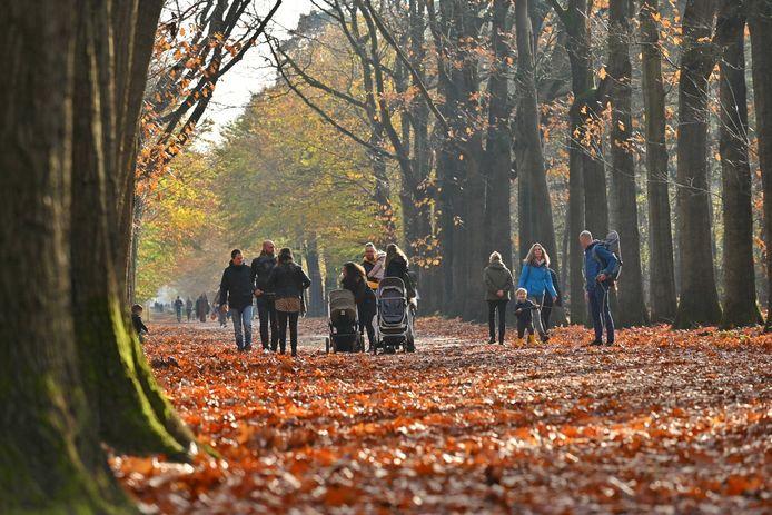 Het Mastbos in Breda is een plek die bij mooi weer garant staat voor een code rood op de Druktemeter.