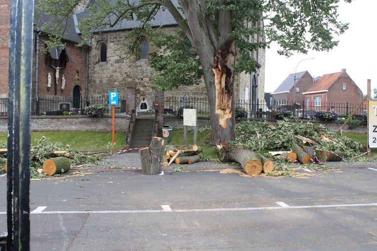 Tijdens de storm van 9 juni brak een grote tak van de oude linde aan de kerk van Westrem