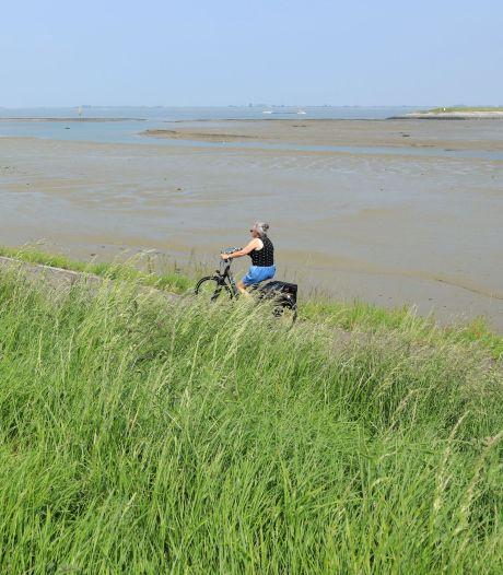 Onrust in de polder