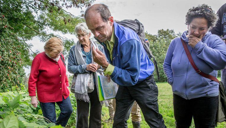 Weer die vermaledijde Japanse duizendknoop? Wilfred Reinhold schat de toestand van de Nederlandse natuur somber in Beeld Jean-Pierre Jans