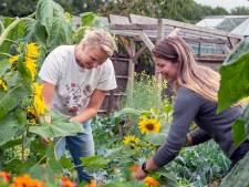 Zelf een maaltje plukken bij Bergse stadsboerderij: 'Die worteltjes groeien niet in de supermarkt'