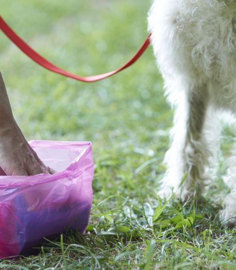 Wonen op een hondenuitlaatveldje: het kan vanaf volgend jaar in Woudenberg