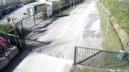 Webcam aan containerpark in Rollegem-Kapelle toont hoe druk het er is