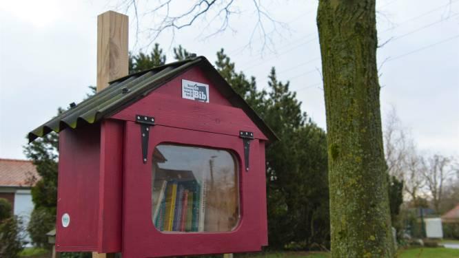 Izegemse bibliotheek zoekt peters en meters voor boekenruilkastjes