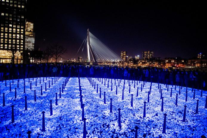 Het kunstwerk Levenslicht van kunstenaar Daan Roosegaarde is donderdagavond gepresenteerd op de oevers van de Maas in Rotterdam.
