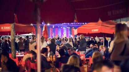 """""""Meer cultuur, minder massaal pinten drinken"""": Mechelsepleinfeesten lanceren alternatief programma"""