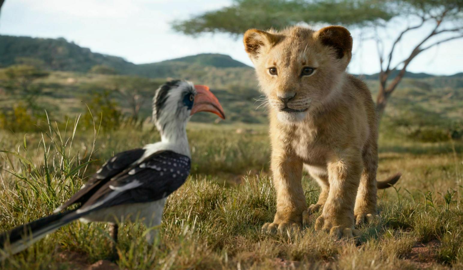 Zazoe (ingesproken door Jon Oliver) en de jonge Simba