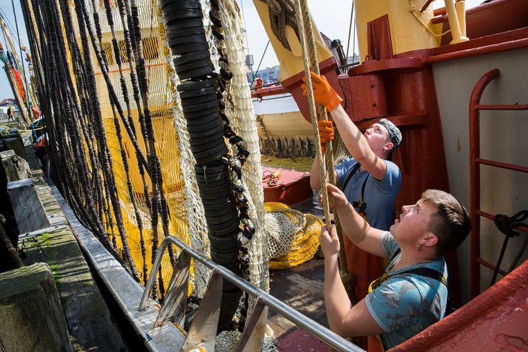 Aan boord van de UK19 uit Urk. Pulskorvisserij (ook wel kortweg pulsvisserij genaamd) is beroepsvisserij met behulp van sleepnetten over de zeebodem. Beeld Najib Nafid