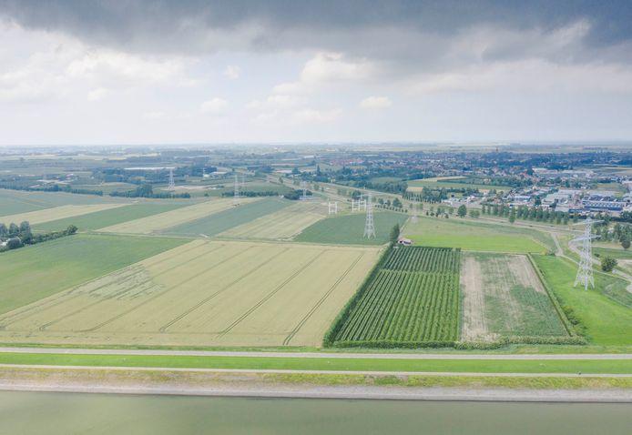 De Willem-Annapolder is de beoogde locatie voor de aanleg van Smokkelhoek II. Rechts, aan de andere kant van de A58, is het huidige bedrijventerrein te zien. Dat is zo goed als vol.