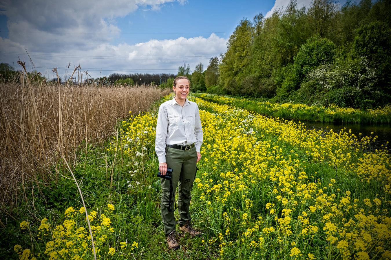 """Boswachter Lisa Wassenaar van Staatsbosbeheer tussen het koolzaad in de Poldervaart: ,,Waar mensen eerst lekker alleen wandelden, komen ze nu groepen tegen."""""""