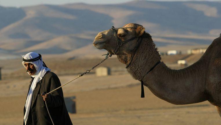 Een bedoeïene in de Negev-woestijn. Beeld AFP