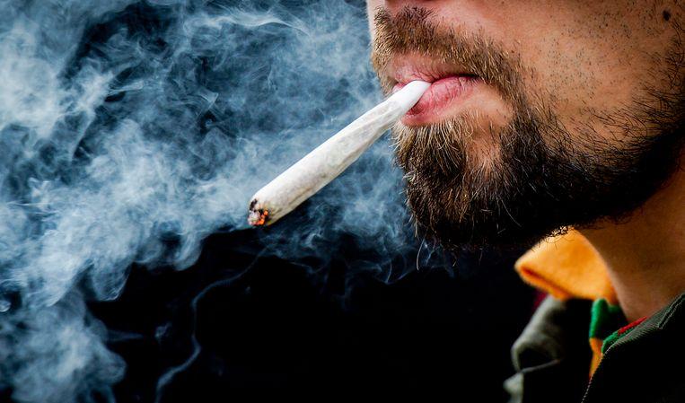 Een bezoeker rookt een joint op Cannabis Bevrijdingsdag in het Flevopark in Amsterdam.  Beeld  ANP