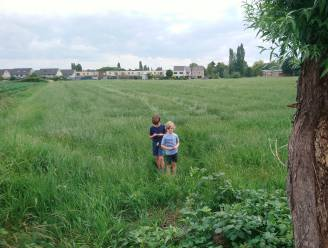 """""""Uniek: een herbestemming om geen extra woningen, maar extra bos te creëren"""": stad zet eerste stappen voor Stadsrandbos Noord"""