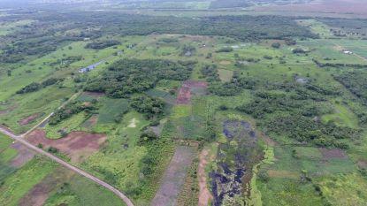 Archeologen leggen oudste en mogelijk grootste bouwwerk van Maya's bloot