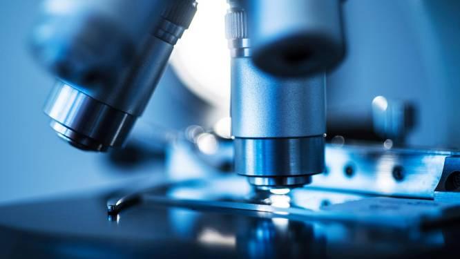 Nieuwe strategie tegen ziekenhuisbacterie geïnspireerd op virussen