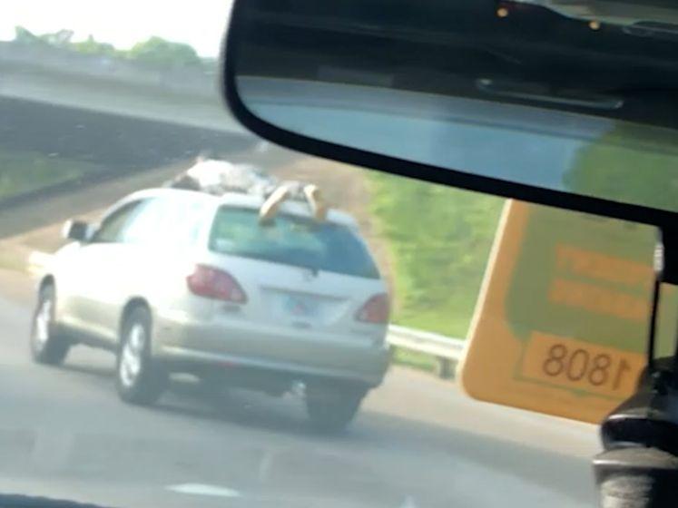 Auto met man op dak raast voorbij op snelweg in Florida