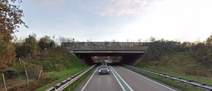 Het ecoduct in Zuidwolde