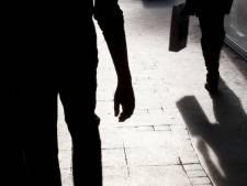 Vrouw (85) beroofd van handtas in Ede: 'Deze laffe dader moeten we pakken'